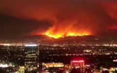 The Worst Blazes on Californian Record