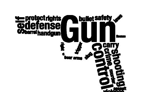 Gun Control: Insights and arguments by Journalism students