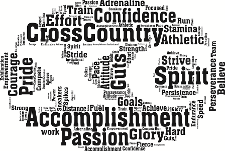 Cross-Country Team Competes at States!