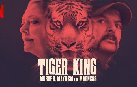 Who is the Tiger King? A Netflix Original Series reviewed